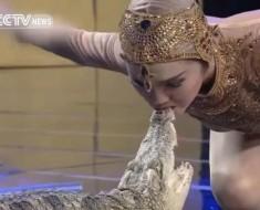 krokodil-ljubljenje